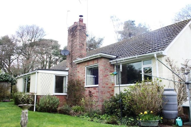 Thumbnail Detached bungalow for sale in Hawkins Lane, West Hill, Ottery St. Mary