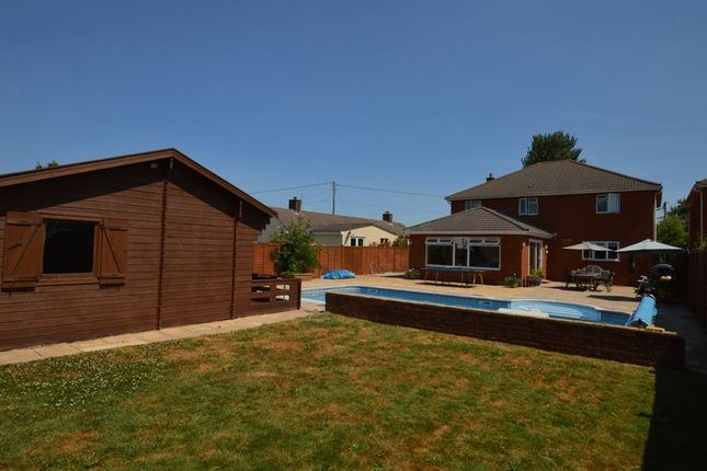 Thumbnail Detached house for sale in Biddisham Lane, Biddisham, Axbridge