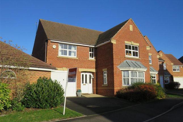 Thumbnail Property to rent in Peto Grove, Heathcote, Warwick