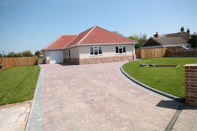 Thumbnail Detached bungalow for sale in Pork Lane, Great Holland, Frinton-On-Sea