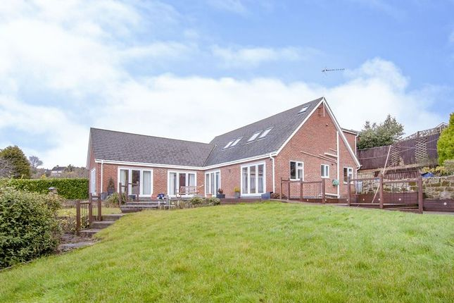 Thumbnail Detached house to rent in Queens Drive, Belper