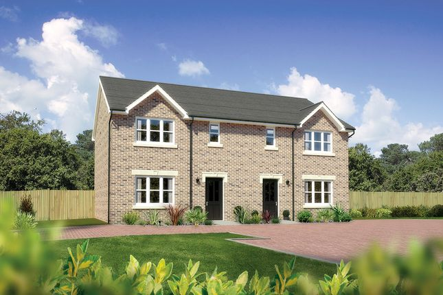 "Thumbnail Semi-detached house for sale in ""Caplewood"" at West Road, Haddington"