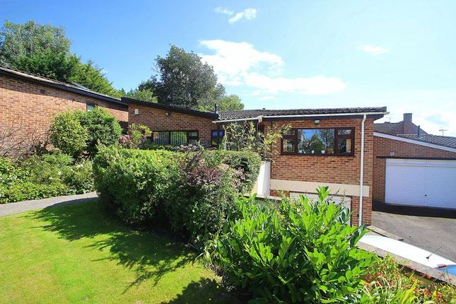 Thumbnail Detached bungalow for sale in Leg Of Mutton Road, Glastonbury
