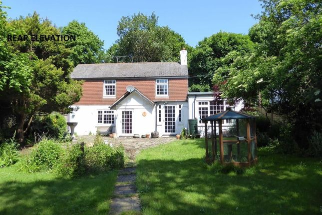 Thumbnail Detached house for sale in New Cut, Westfield, East Sussex