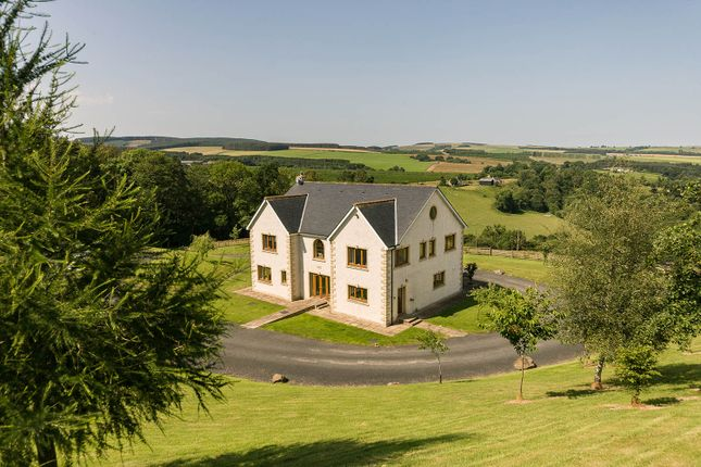 Thumbnail Equestrian property for sale in Leafywood, Overton Bush, Jedburgh, Scottish Borders