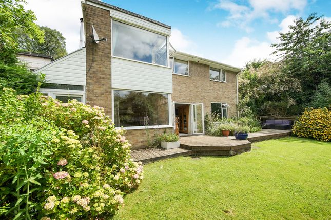 Thumbnail Detached house for sale in The Knapp, Hilton, Blandford Forum