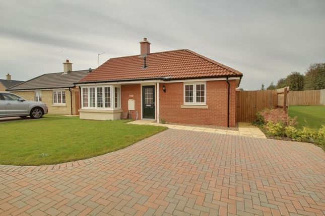 Thumbnail Detached bungalow for sale in The Hereward, Mayfield Gardens, Baston, Peterborough