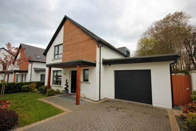 Thumbnail Detached house for sale in The Walled Gardens, Stoneywood, Aberdeen