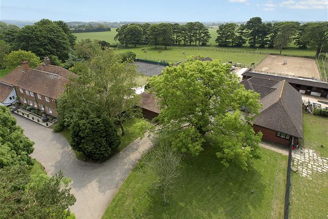 Thumbnail Equestrian property for sale in Alkham, Dover
