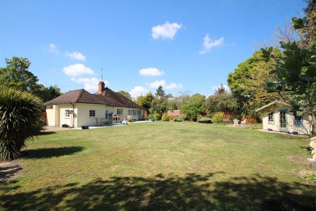 Thumbnail Detached bungalow for sale in Bealings Road, Martlesham, Woodbridge