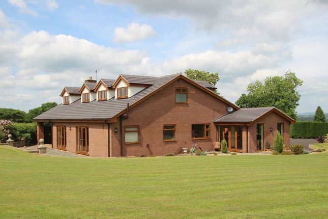 Thumbnail Detached house for sale in Clewlows Bank, Stockton Brook, Stoke-On-Trent