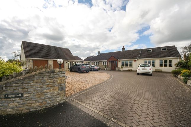 Thumbnail Detached bungalow for sale in Highcroft, Mill Lane, Wedmore, Somerset