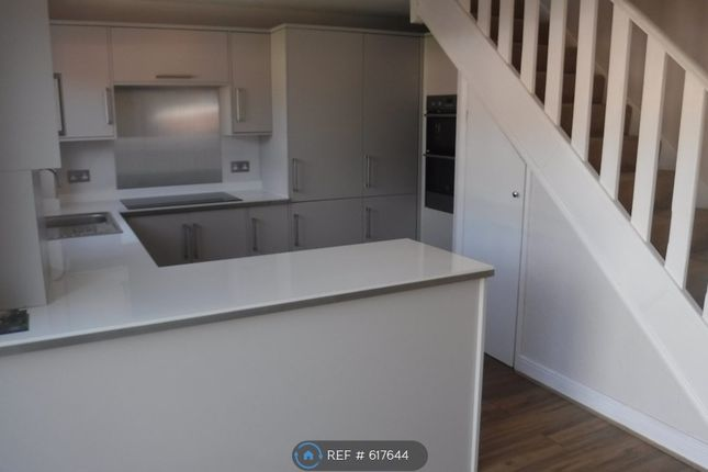 Thumbnail End terrace house to rent in Fir Tree Grove, Chatham