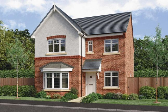 "Thumbnail Detached house for sale in ""Calver"" at Barnards Way, Kibworth Harcourt, Leicester"