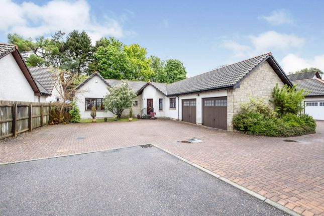 Thumbnail Detached bungalow for sale in Holm Avenue, Inverness