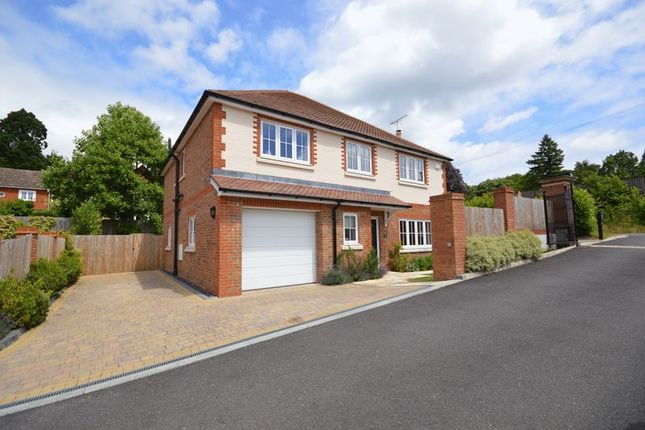 Thumbnail Detached house to rent in The Martins, Portsmouth Road, Hindhead