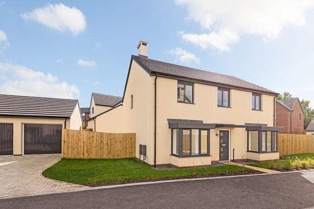 "Thumbnail Detached house for sale in ""The Berrington"" at Waddeton Close, Paignton"
