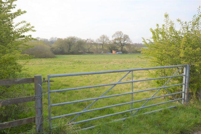 Woodberry Lane, Rowlands Castle PO9