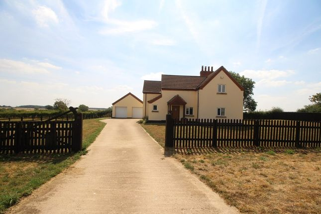 Thumbnail Detached house to rent in The Pastures, Old Somerby, Grantham