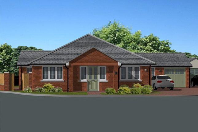 Thumbnail Detached bungalow for sale in Kittersley Drive, Liverton, Newton Abbot, Devon