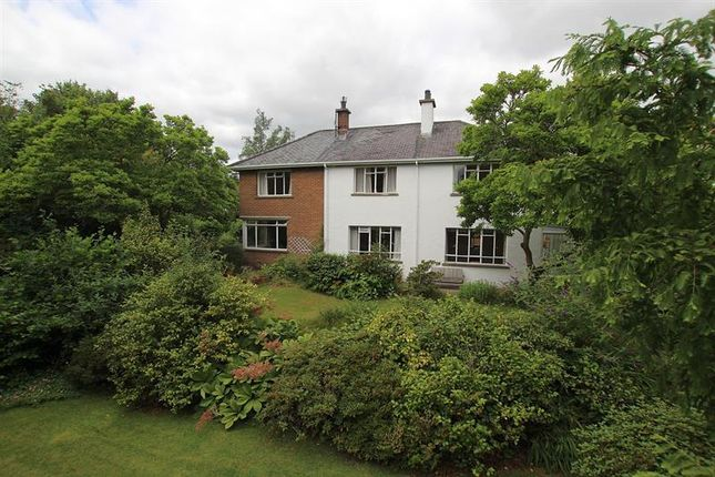 Thumbnail Detached house for sale in Cemetery Road, Trecynon, Aberdare