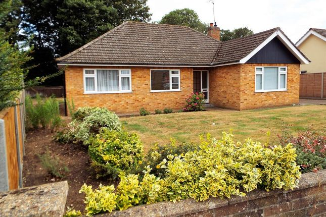 Thumbnail Detached bungalow to rent in Beech Close, Swaffham