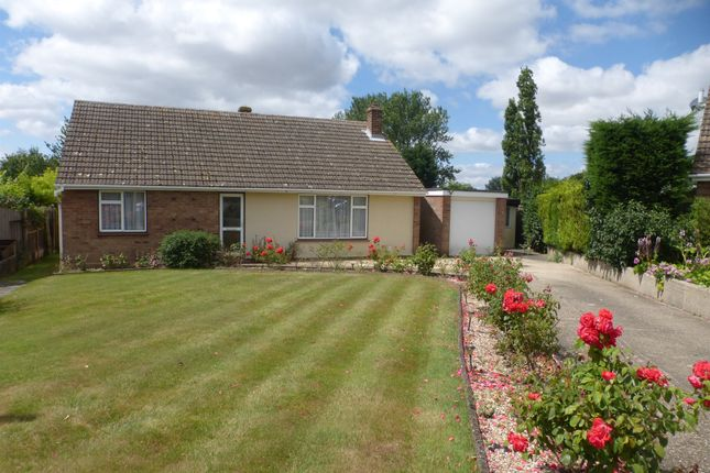 Thumbnail Detached bungalow for sale in Priory Farm Road, Hatfield Peverel, Chelmsford
