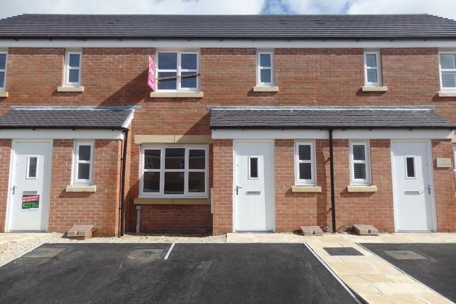 Thumbnail Terraced house to rent in Dan Y Cwarre, Carway, Kidwelly