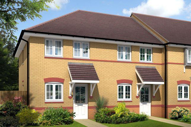 "Thumbnail Semi-detached house for sale in ""Ashford"" at Saxon Court, Bicton Heath, Shrewsbury"