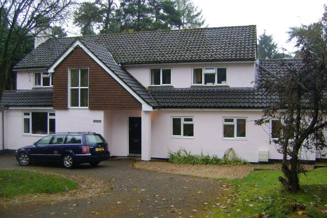 Thumbnail Shared accommodation to rent in Linkside East, Hindhead