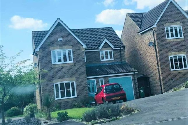 Thumbnail Detached house for sale in Beech Wood Drive, Tonyrefail, Porth