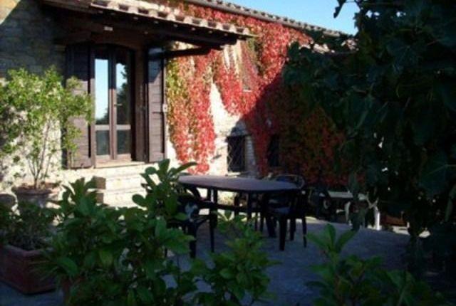 Picture No.04 of Montegabbione, Umbria, Italy