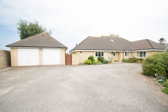 Thumbnail Bungalow to rent in Westleaze, Charminster, Dorchester