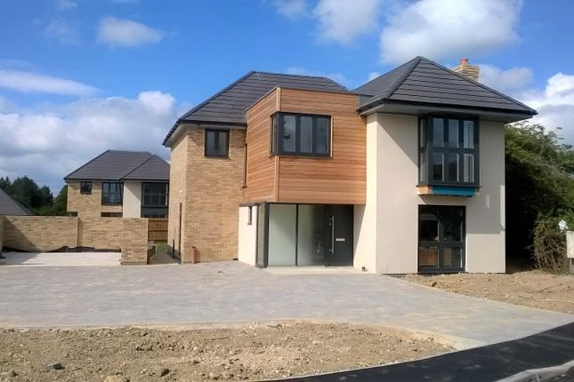 Thumbnail Detached house for sale in Brookside, Watling Street, Hockliffe
