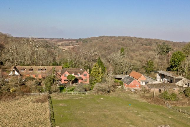 Thumbnail Detached house for sale in Vereley, Burley