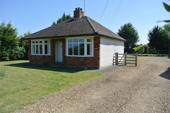 Thumbnail Detached bungalow for sale in Church Lane, Stibbington, Cambridgeshire