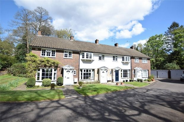 Thumbnail Terraced house for sale in Pinewood Gardens, Bagshot, Surrey