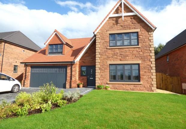 Thumbnail Detached house for sale in Whins Close, Heads Nook, Brampton