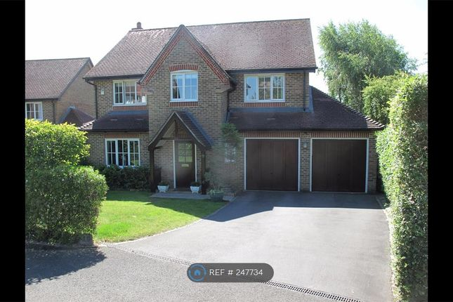 Thumbnail Detached house to rent in The Hall Way, Winchester