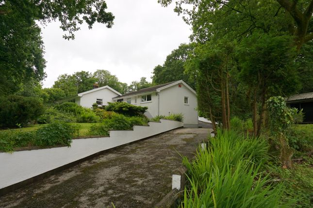 Thumbnail Detached bungalow for sale in Pentwyn Road, Cross Hands, Llanelli
