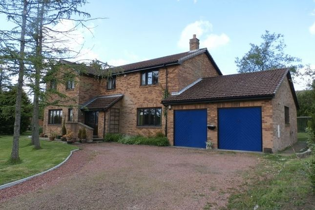 Thumbnail Detached house for sale in The Larches, Swarland, Morpeth