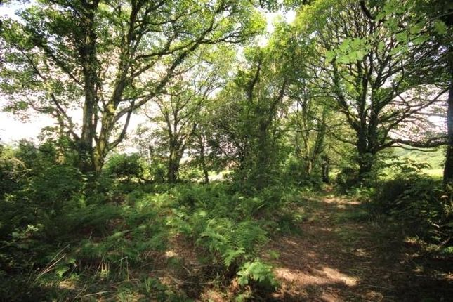 Picture No. 35 of Wendron, Helston, Cornwall TR13