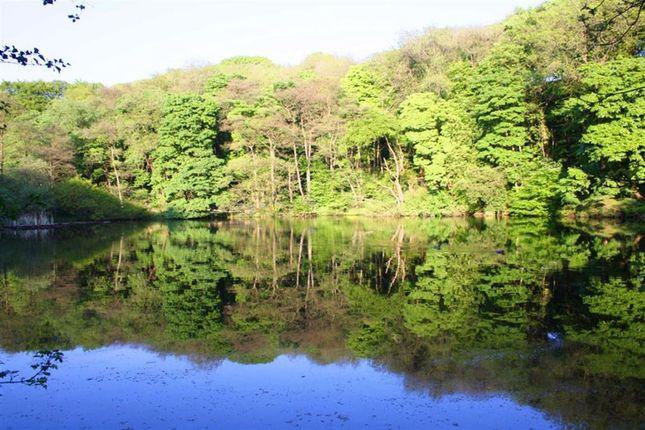 Duck Pond of Long Row, Calder Vale, Preston PR3