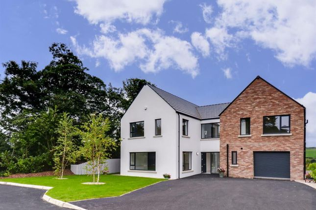 Thumbnail Property for sale in 5 Dunnwood Park, Londonderry