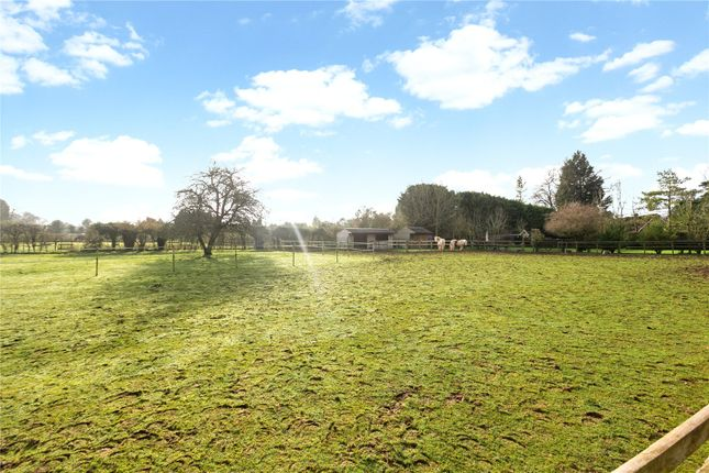Thumbnail Detached house for sale in Stapley Lane, Ropley, Alresford, Hampshire