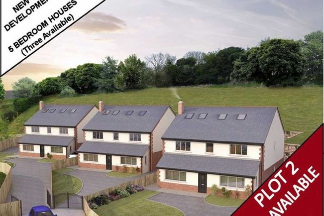 Thumbnail Detached house for sale in Ffordd Y Faenol Fach, Holywell, Flintshire