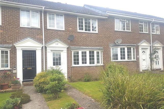 Thumbnail Property to rent in Maple Way, Gillingham