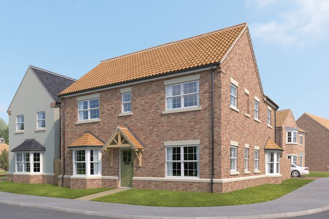 Thumbnail Detached house for sale in The Woodlark, The Meadows, Topcliffe Lane, Dishforth