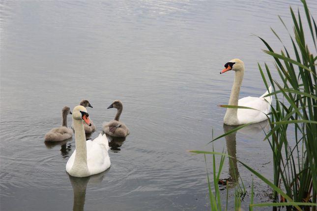 Picture No. 12 of Wollaston, Wellingborough, Northamptonshire NN29