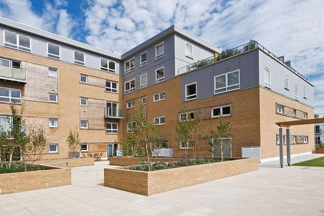 1 bed flat to rent in Cherrydown East, Basildon SS16